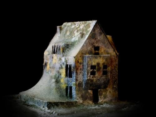 After Effects model (Courtesy Daniele Del Nero)