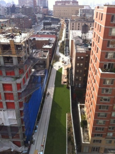 View of the High Line lawn from HL23. (Image: Diana Darling)