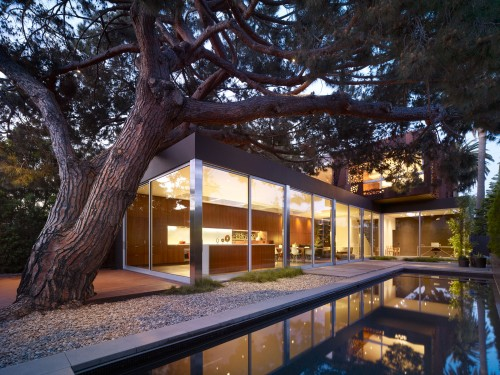 Modal Design's Walnut Residence