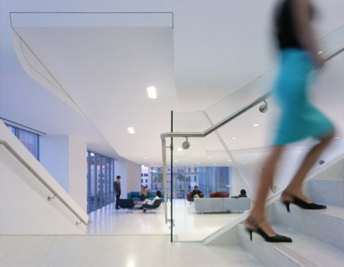 Endeavor Offices by NMDA