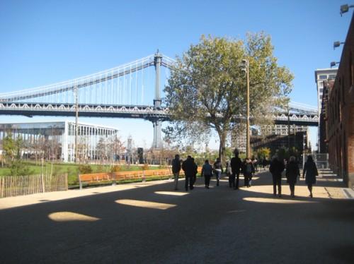 MVVA's Brooklyn Bridge Park after the October storm.