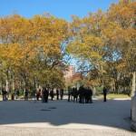 Reclaimed pedestrian space at Grand Army Plaza. (Branden Klayko)