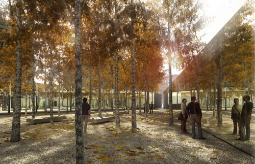 "Brooklyn's A+I Studio's winning entry: ""Infinite Forest"""