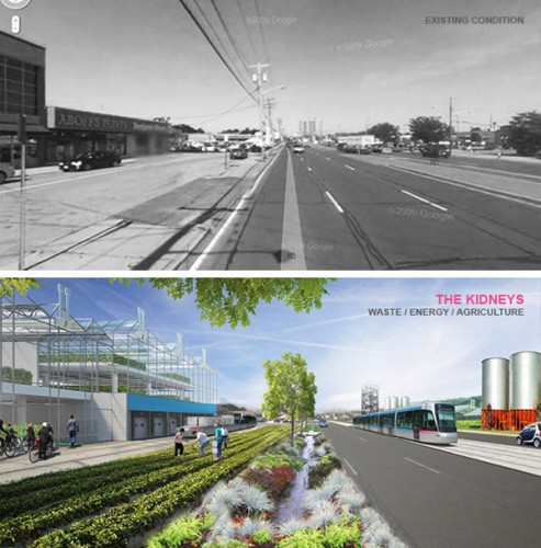 LIRR Long Island Radically Rezoned. (Courtesy HOLLER architecture with Ana Serra, Sven Peters, Katelyn Mulry)