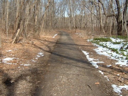 Parks plans on paving and widening the Putnam Trail in Van Cortlandt Park. (Courtesy Save the Putnam Trail)