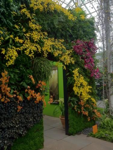The vertical garden cube shows the potential for creating garden rooms.