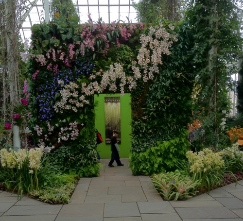Patrick Blanc's cube installation at the New York Botanical Garden.