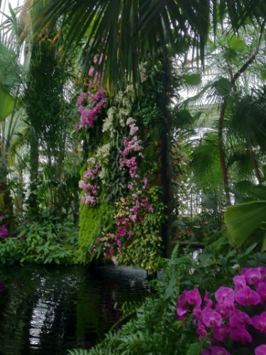 A vertical wall sits at the center of the rotunda in the Haupt Conservatory.