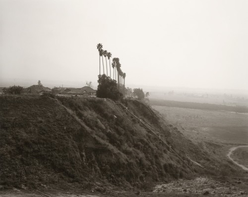 New development on a former citrus-growing estate, Highland, California, 1983. (Robert Adams/LACMA)