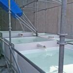Cascading pools of water underneath the main scaffolding. (Branden Klayko/AN)