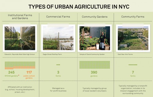 Types of Urban Agriculture in New York (Courtesy Design Trust for Public Space)