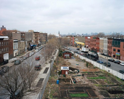 Phoenix Community Garden in Brownsville, Brooklyn (Rob Stephenson/Courtesy Design Trust for Public Space)