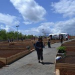 The community celebrates UpGarden in early June. (Courtesy UpGarden P-Patch)