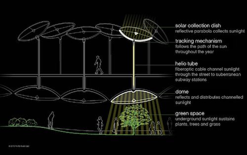 Lowline Canopy