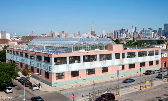 Gotham Greens' Rooftop Farm in Greenpoint (Courtesy of Gotham Greens)