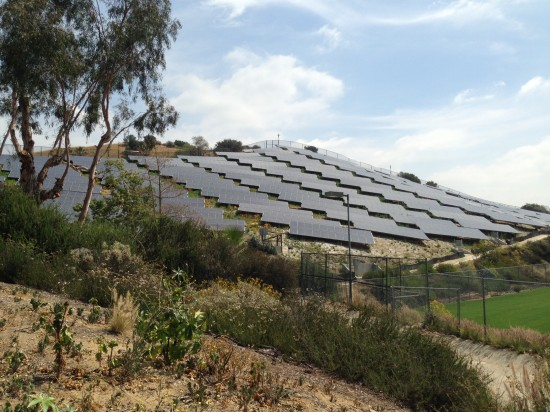 Oxy Solar Array (Sam Lubell/ AN)