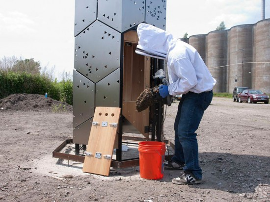 Beekeeper Philip Barr moves the colony to its new home. (Hive City Design Team)
