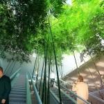 green_valley_china_07