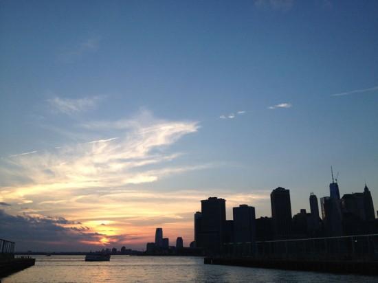 View of Lower Manhattan from Brooklyn Bridge Park. (Nicole Anderson)