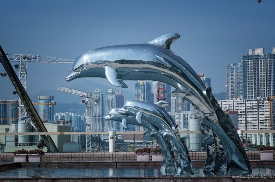 HONG KONG'S LOVE FOR DOLPHINS (ANTWERPENR / COURTESY FLICKR)