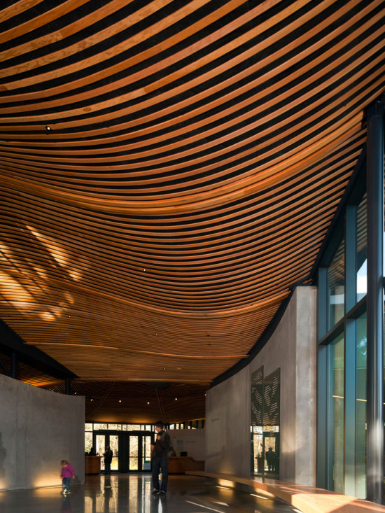 According to StructureCraft's Brian Woudstra, exposed views of wood improve the user experience. (Nic Lehoux)