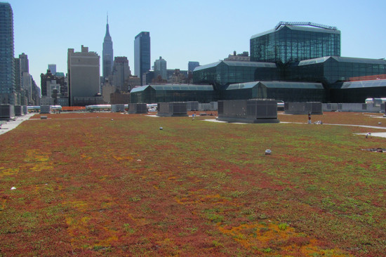 Green Roofing by XeroFlor America