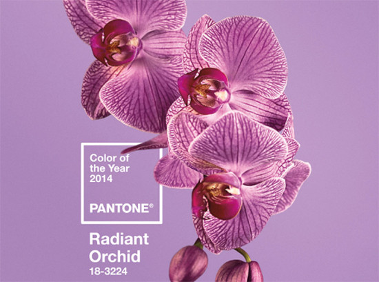 Pantonen's 2014 Color of the Year, 18-3224 Radiant Orchid (courtesy Pantone)