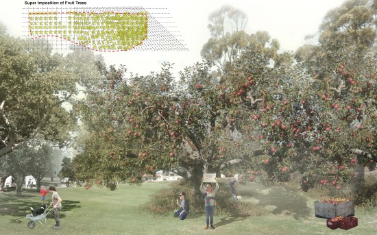 """SECOND PRIZE WENT TO """"HILLCREST FRUIT FARM,"""" BY A TEAM FROM NEWSCHOOL OF ARCHITECTURE + DESIGN (AIA SAN DIEGO)"""