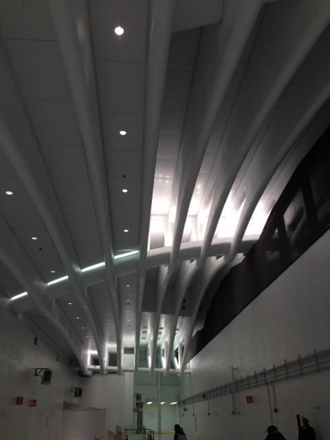 The Signature Calatrava Beams (Henry Melcher / AN)