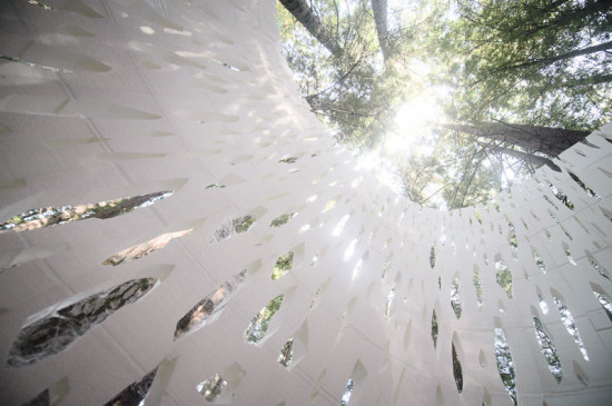 ECHOVIREN IS A REFLECTION ON THE AESTHETICS AND HISTORY OF ITS FOREST SITE (SMITH ALLEN)