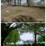 Point State Park's new landscaping. (Courtesy Riverlife)