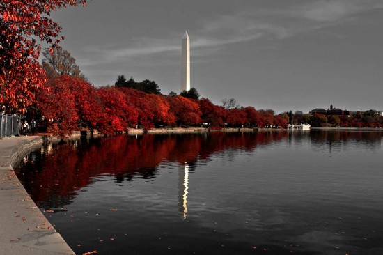 Washington Monument in the fall. (Corey'sWorld / Flickr)