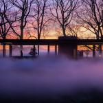 01-glass-house-fog-veil-archpaper