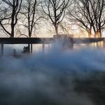 02-glass-house-fog-veil-archpaper