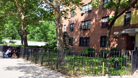 Gompers Houses in Lower East Side, NYC. (Courtesy of Design Trust for Public Space)