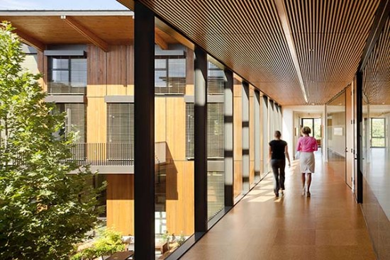 Deep overhangs, exterior movable blinds, shade trees, and balconies reduce solar gain along the building's southwest elevation. (Jeremy Bittermann)