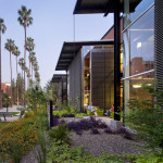 The renovated Health Services Building reengages the Palm Walk, ASU's pedestrian spine. (Bill Timmerman)