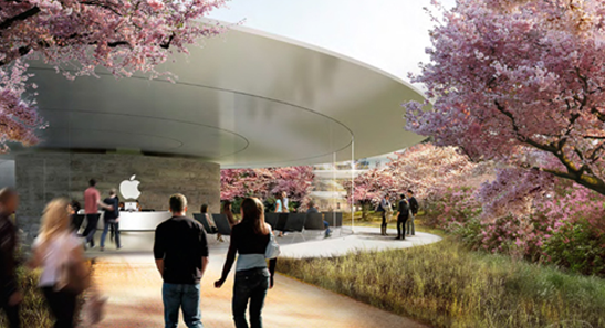 Apple's auditorium pavilion (Poltrona Frau Group)