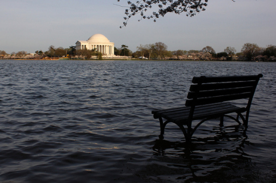 Overflow at the Tidal Basin in Washington, D.C. (Flickr / thisisbossi)