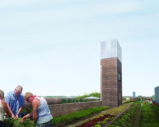 Rooftop farm. (Courtesy MABU Design)