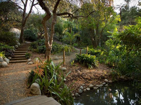 Mathias Botanical Garden (courtesy Mildred Ema)