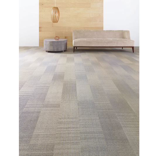 shaw_carpet_collective-time