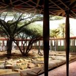 The Qur'anic Botanic Garden. (Courtesy West 8)