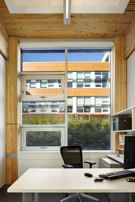 The architects prioritized daylighting and natural ventilation via operable windows. (Martin Tessler / Courtesy Perkins+Will)
