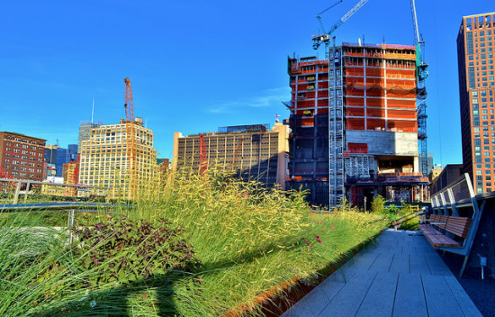 Hudson Yards as seen from the High Line. (Flickr /  gigi_nyc)