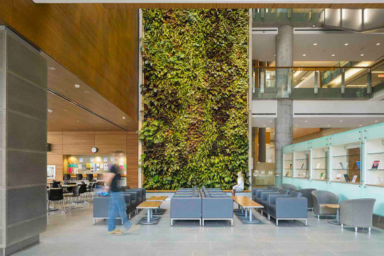 Approximately 1 square foot of biofilters treats every 100 square feet of floor area. (courtesy Diamond Schmitt Architects)