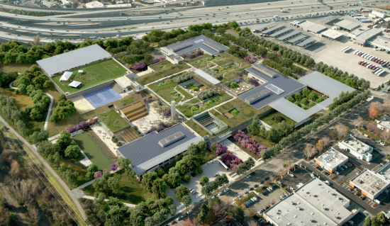A field of green for Microsoft's campus overhaul and expansion. (Steelblue/ WRNS Studio)