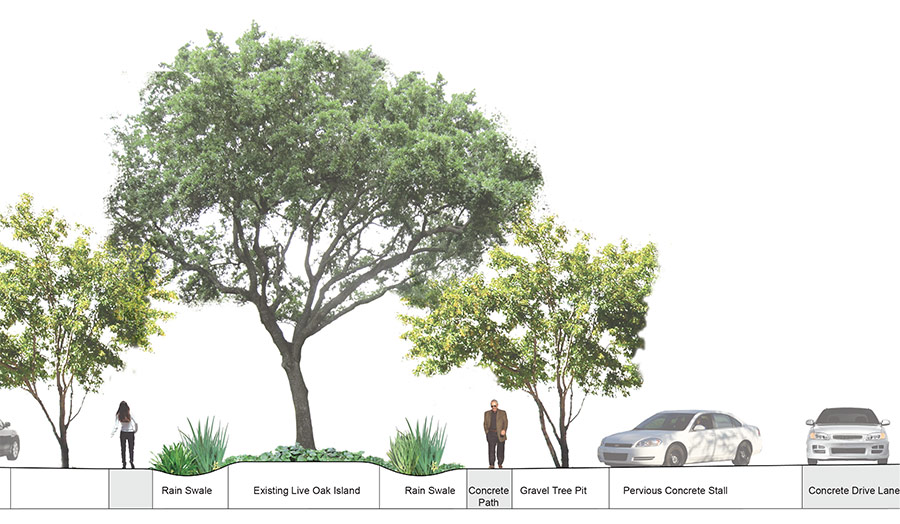 pics for gt landscape architecture tree drawings