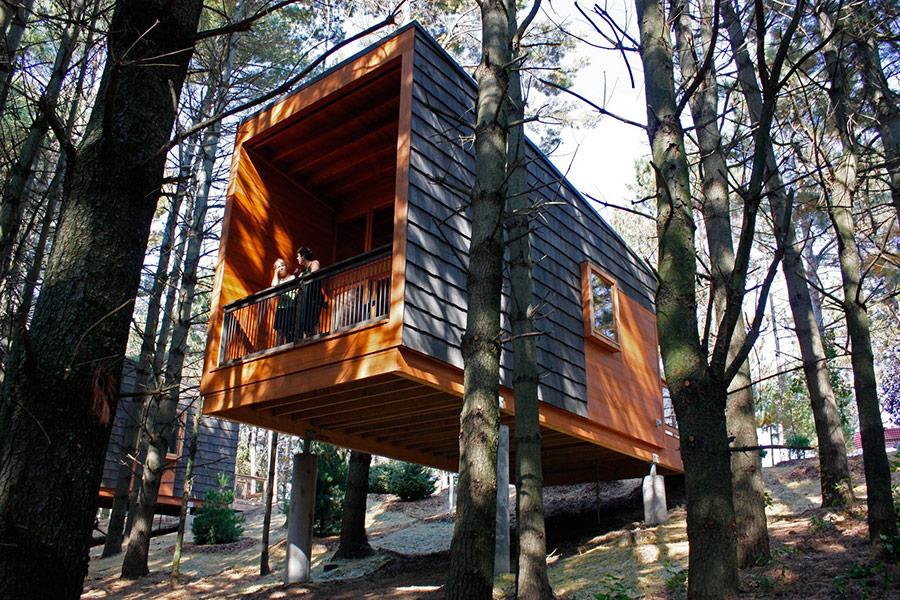 Cabin Cool