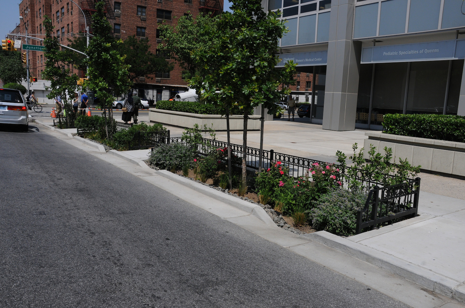 321 New Rain Gardens In Queens Will Help Clean Up Newtown